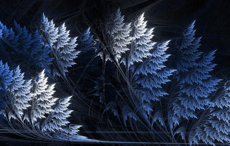 Photo wallpaper line, abstraction, the dark background, curves, screensaver on your desktop, морозная ночь, зимний фрактал, фантазии …
