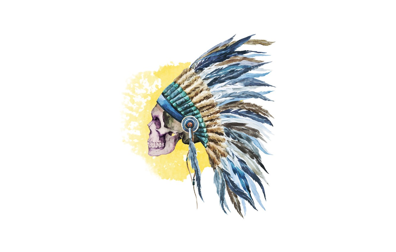 Photo wallpaper skull, vector, feathers, Indian