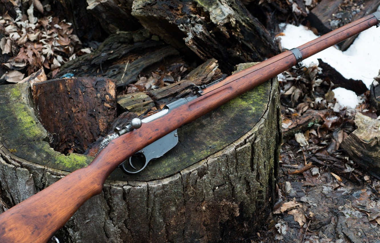 Photo wallpaper weapons, rifle, weapon, rifle, Steyr Mannlicher, M95, M1895