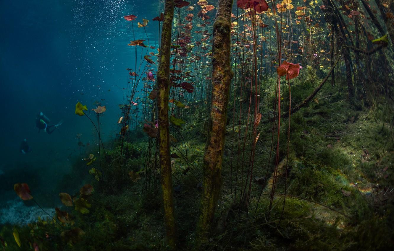 Photo wallpaper lake, diving, lake, diving, Jennifer Lu