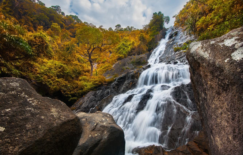 Photo wallpaper forest, landscape, river, rocks, waterfall, forest, river, landscape, beautiful, autumn, waterfall