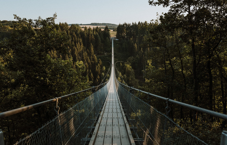 Photo wallpaper forest, bridge, nature