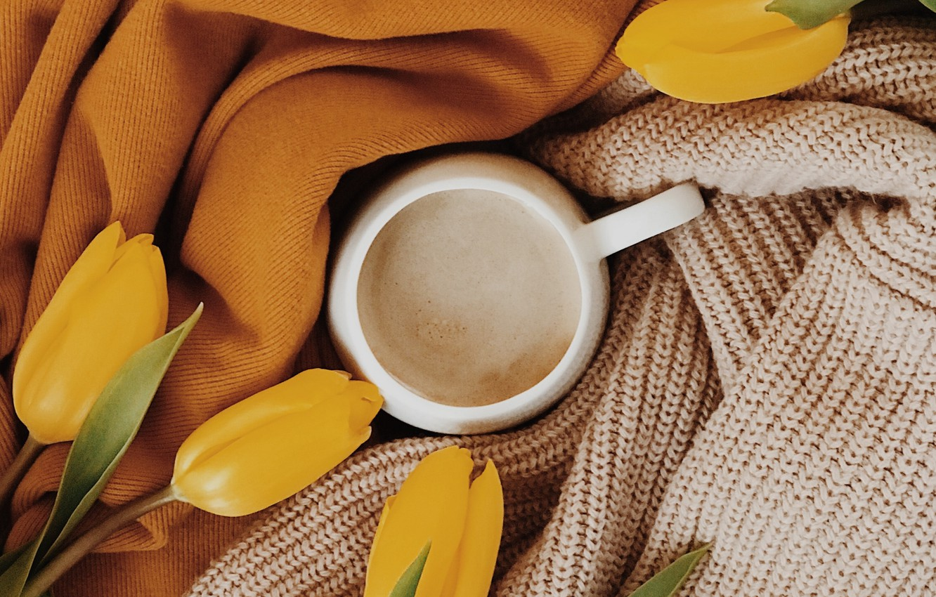 Photo wallpaper comfort, clothing, Cup, tulips, fabric, drink