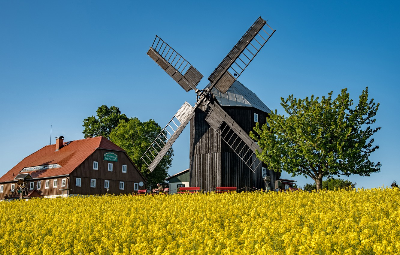 Photo wallpaper field, the sky, the sun, trees, house, Germany, mill, benches, rape, Saxony