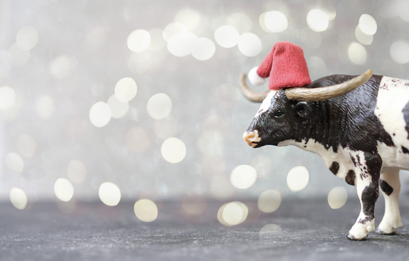 Photo wallpaper lights, holiday, black and white, toy, cow, Christmas, New year, horns, beads, profile, grey background, …