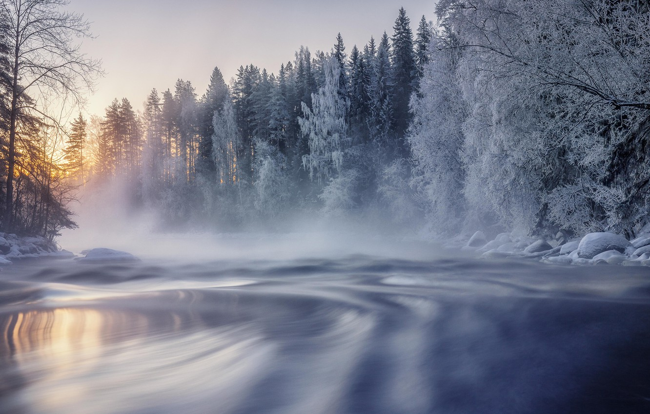 Photo wallpaper winter, frost, forest, snow, trees, lake, dawn, morning, Finland