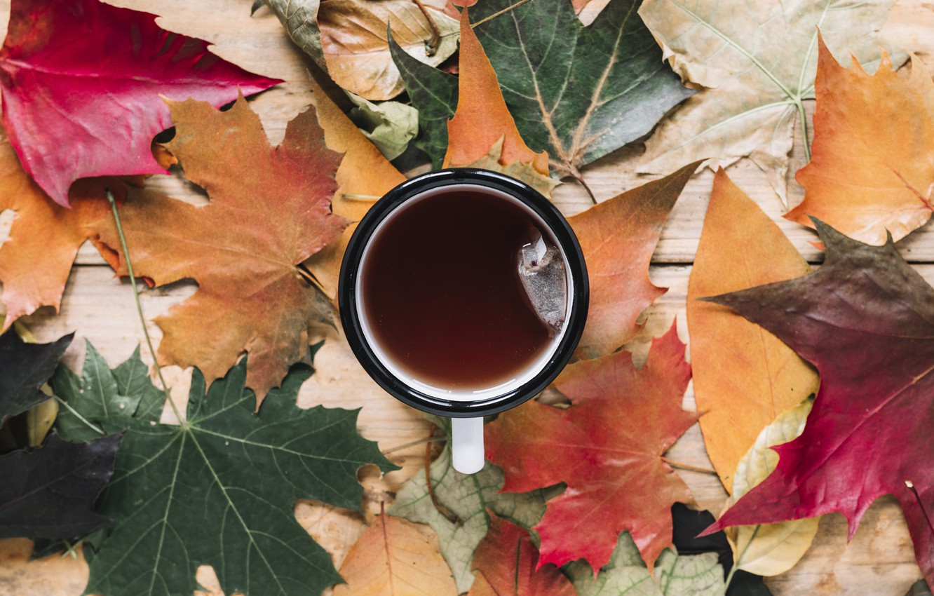 Photo wallpaper autumn, leaves, background, tree, coffee, colorful, Cup, wood, background, autumn, leaves, cup, coffee, maple