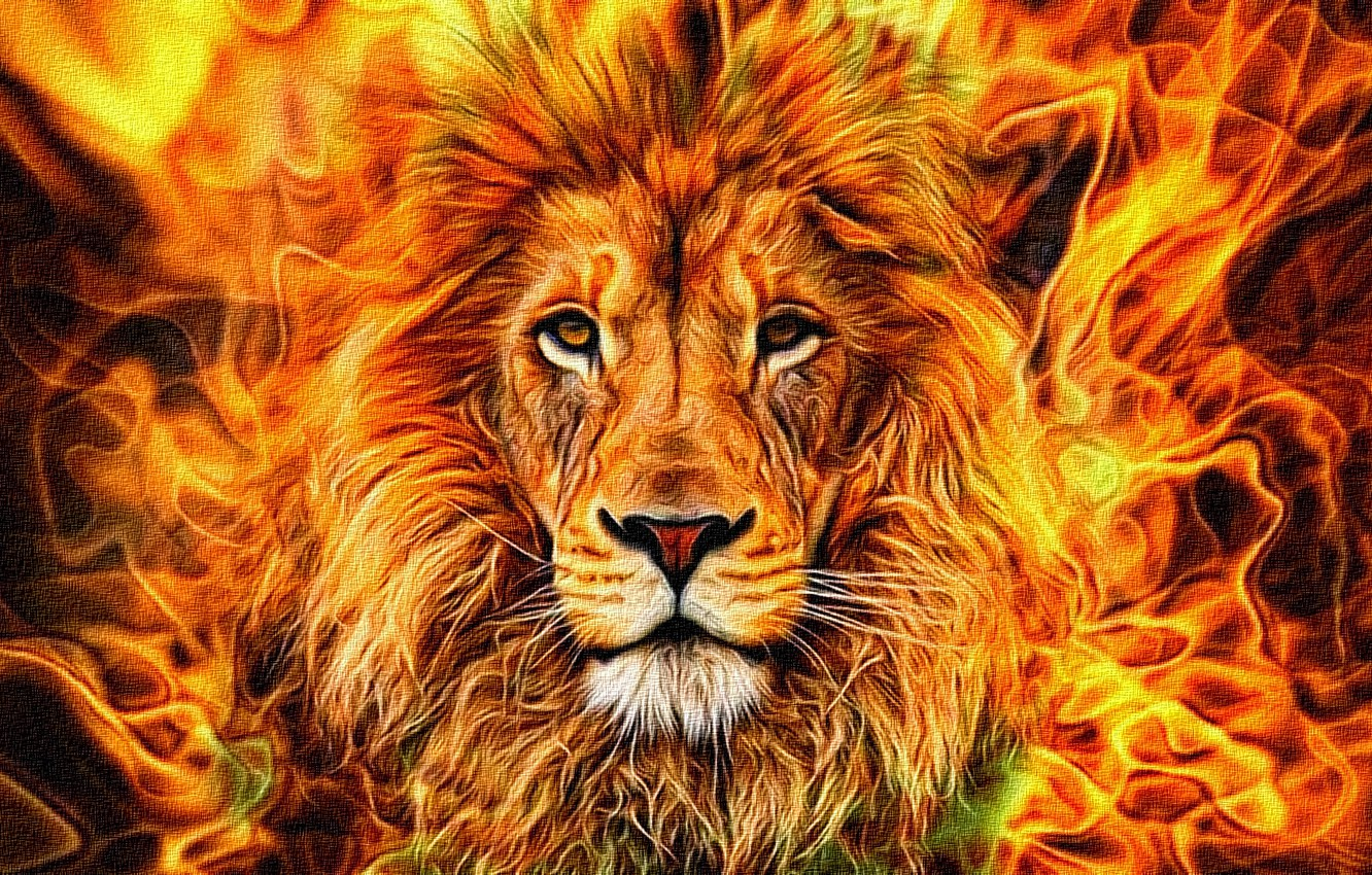 Photo wallpaper abstraction, rendering, flame, figure, portrait, mane, the king of beasts, canvas, the Wallpapers, acrylic, confident …