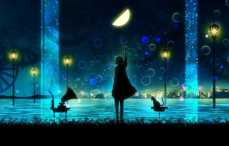 Photo wallpaper cat, water, girl, night, silhouette