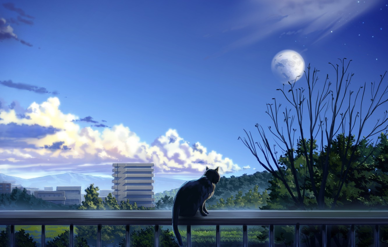 Photo wallpaper cat, trees, the city, balcony