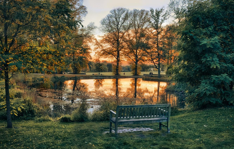 Wallpaper Trees Landscape Sunset Nature Pond Park Lawn Bench Images For Desktop Section Pejzazhi Download