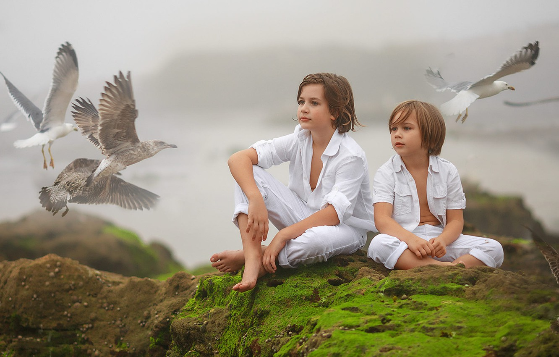Photo wallpaper birds, nature, children, fog, stones, seagulls, moss, boys, Irina Nedyalkova