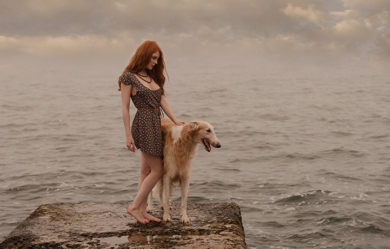 Photo wallpaper water, dog, redhead
