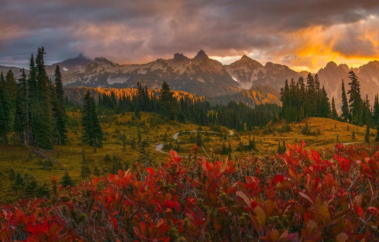 Photo wallpaper road, autumn, trees, landscape, sunset, mountains, clouds, nature, USA, forest, national Park, National Park, Mount …
