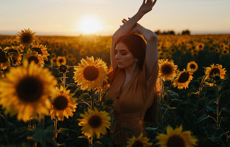 Photo wallpaper field, summer, girl, sunflowers, sunset, pose, mood, hands, Alexei Chelnokov, Лиза Челнокова