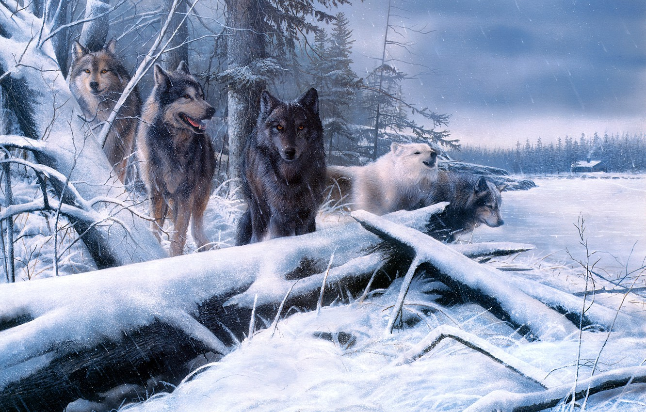 Photo wallpaper winter, field, forest, look, snow, branches, nature, house, figure, pack, picture, art, wolves, painting, logs, …