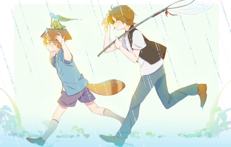 Photo wallpaper rain, frog, tail, book, boys, The Eccentric Family, Uchouten Kazoku