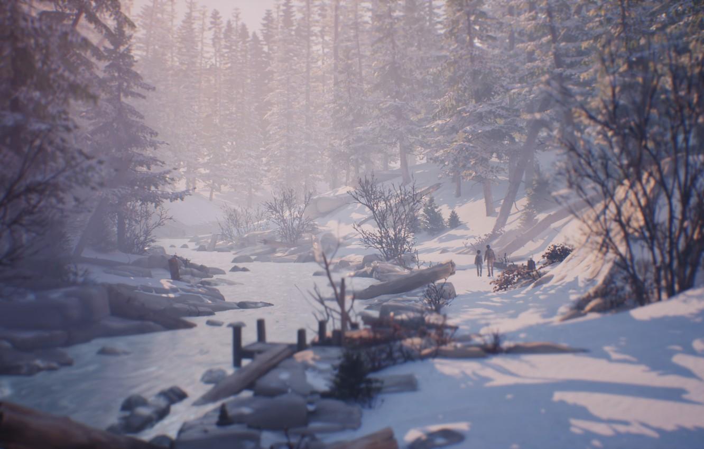 Wallpaper Nature Winter Life Is Strange 2 Images For Desktop