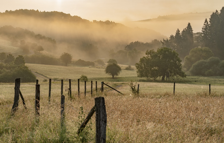 Photo wallpaper field, summer, fog, the fence