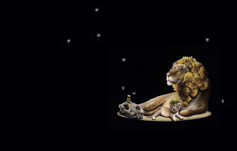 Photo wallpaper nature, skull, Leo, baby, art, lion, Jacub Gagnon, dzwonczyk