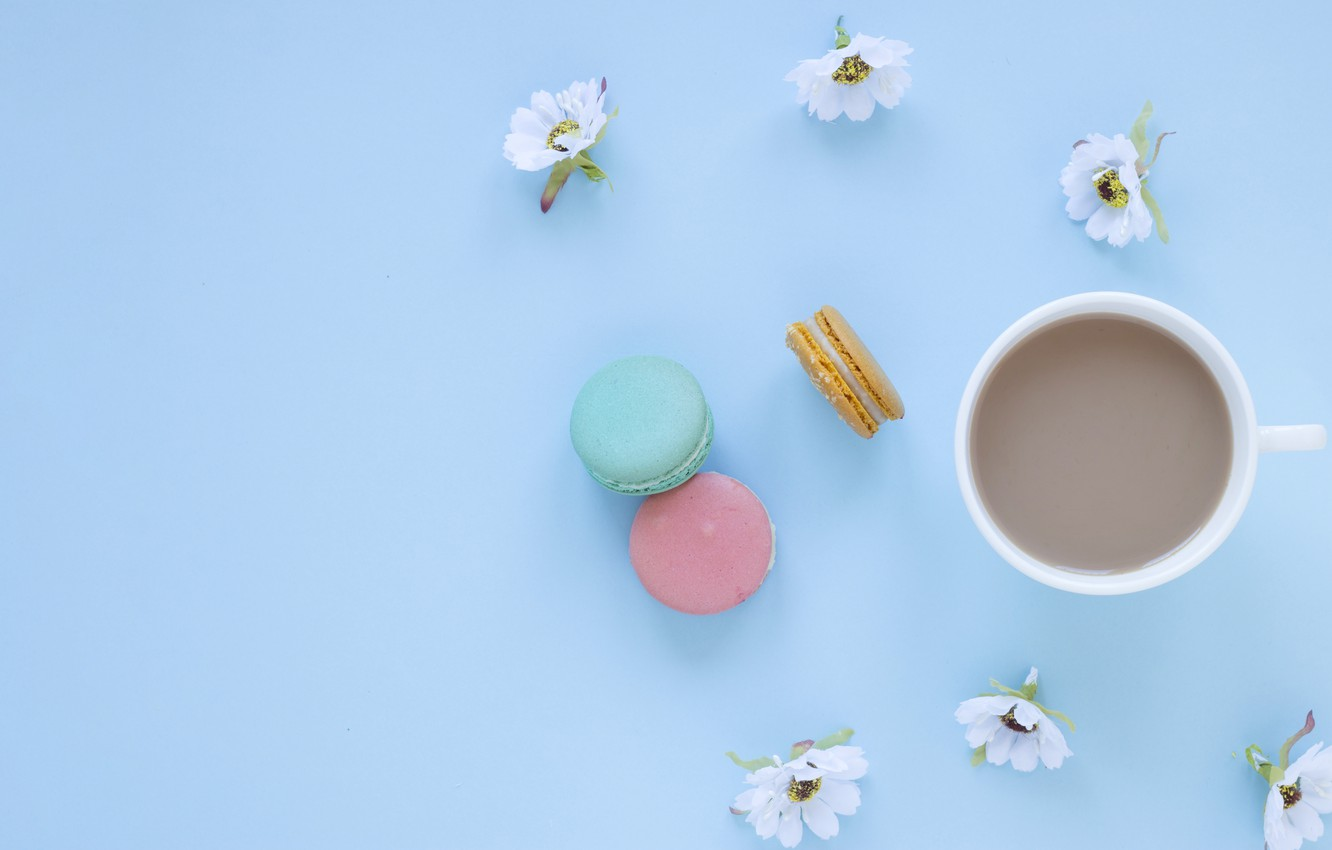 Photo wallpaper flowers, coffee, Flowers, Coffee, Macarons