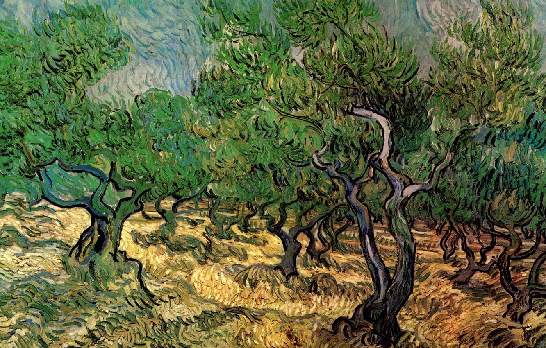 Vincent van Gogh, Olive Grove 2