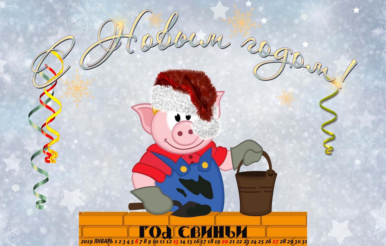 Photo wallpaper hat, pig, pig, calendar for 2019