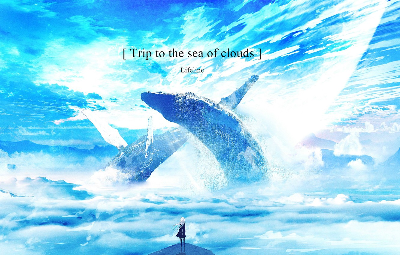 Photo wallpaper girl, clouds, fantasy, whales, phrase