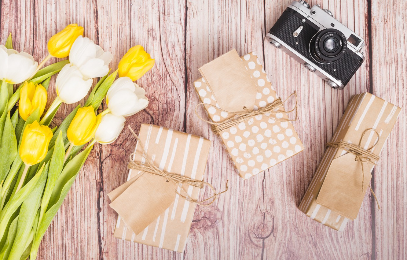 Photo wallpaper the camera, gifts, tulips
