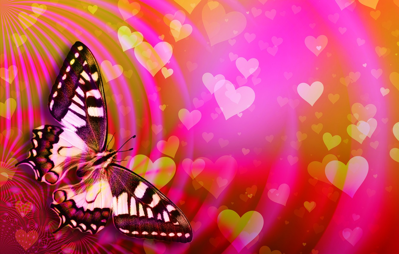 Photo wallpaper butterfly, hearts, Valentine's Day
