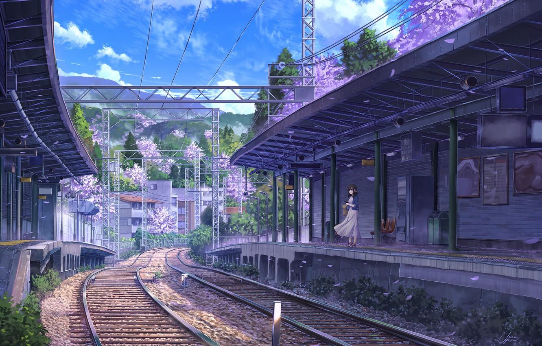 Photo wallpaper girl, spring, station, Sakura, NIK