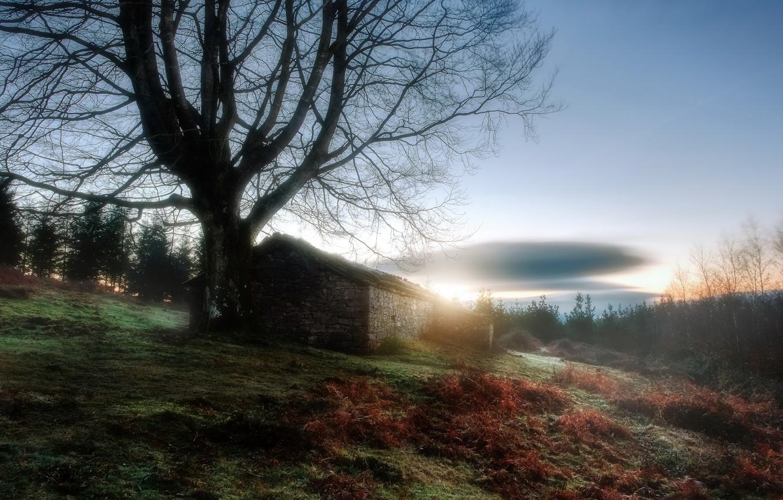 Photo wallpaper nature, house, morning