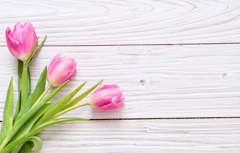 Photo wallpaper flowers, pink, bouquet, tulips