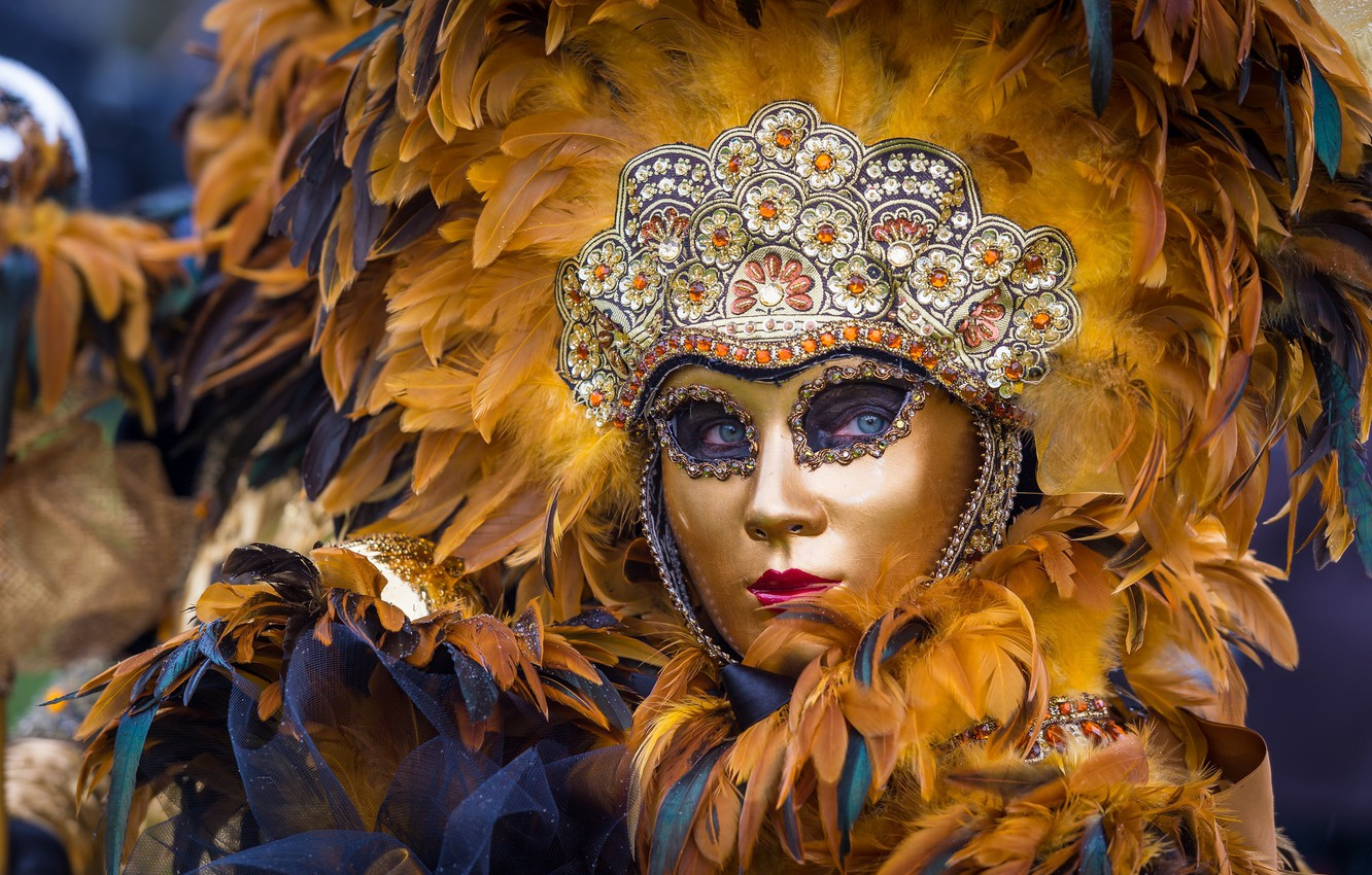 Photo wallpaper feathers, mask, Venice, masquerade