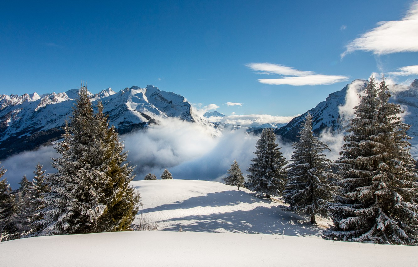 Photo wallpaper winter, the sky, snow, trees, landscape, mountains, nature, fog, ate