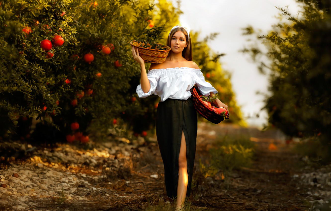 Photo wallpaper girl, trees, mood, skirt, garden, harvest, the cut, blouse, grenades, basket, Mariia, Alex Darash, Mary ...