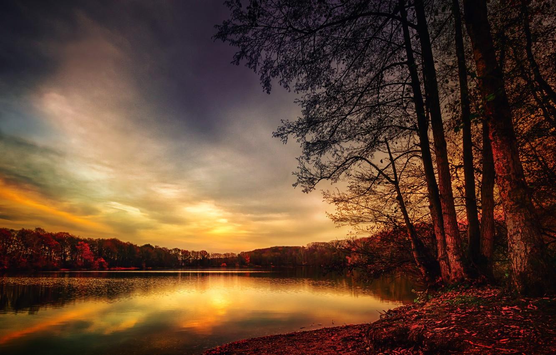 Photo wallpaper autumn, forest, lake