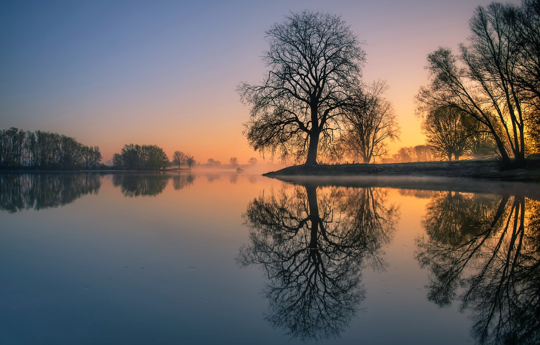 Photo wallpaper sunset, lake, tree
