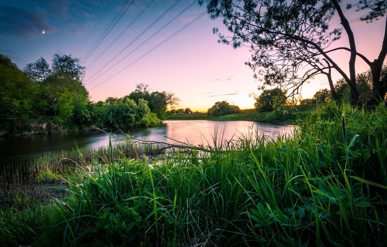 Photo wallpaper sunset, lake, plants