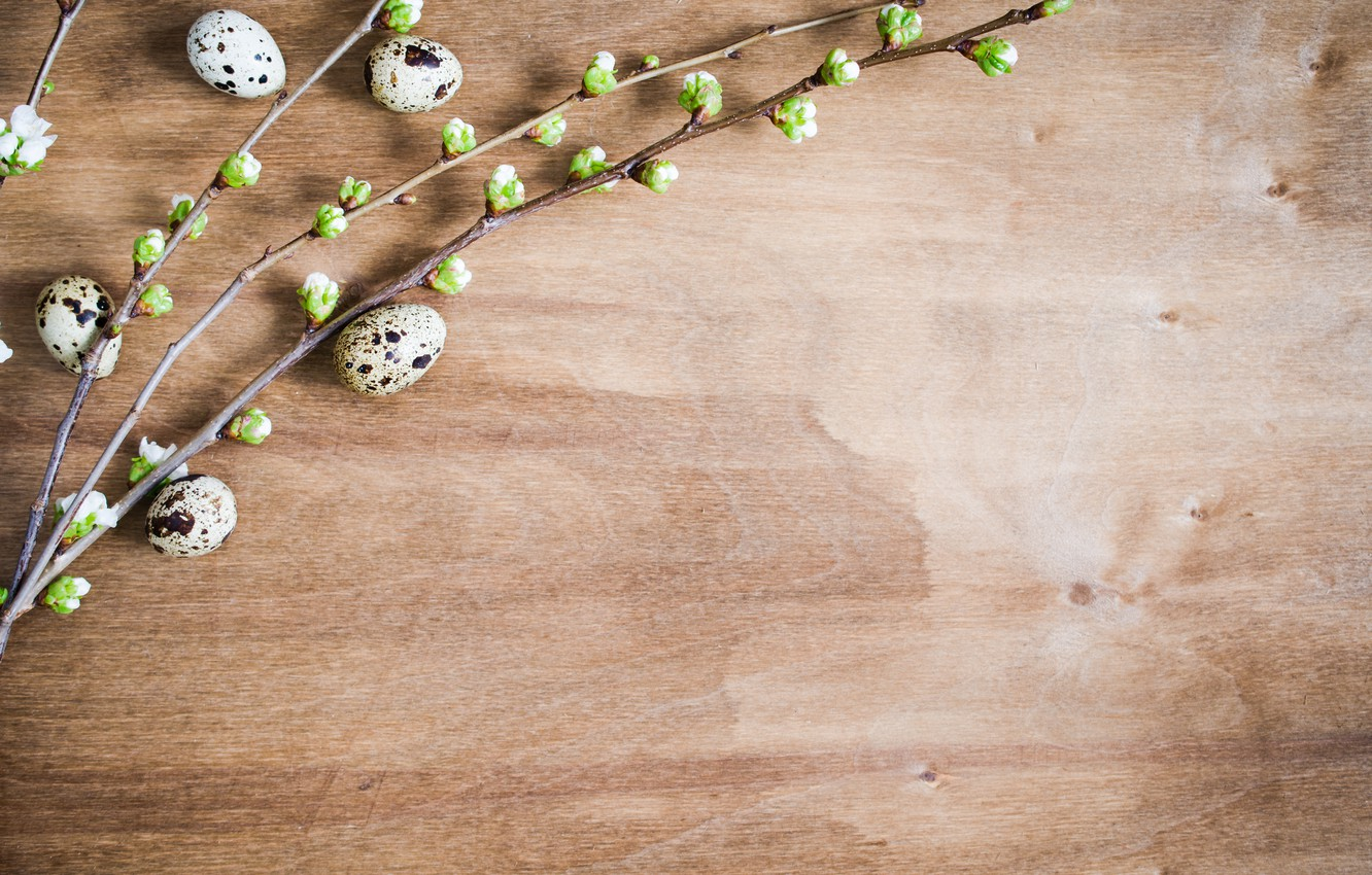 Photo wallpaper branches, holiday, eggs, Easter