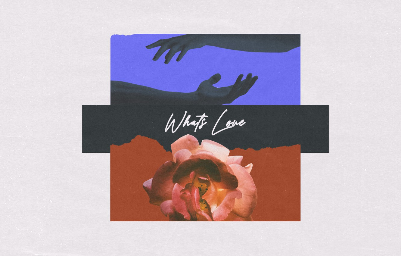 Photo wallpaper Music, Cover, Monstercat, Conro, What's Love