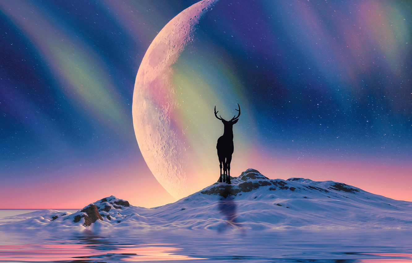 Photo wallpaper winter, snow, night, rendering, hills, planet, Northern lights, deer, silhouette, art, Arctic, North, polar lights, …