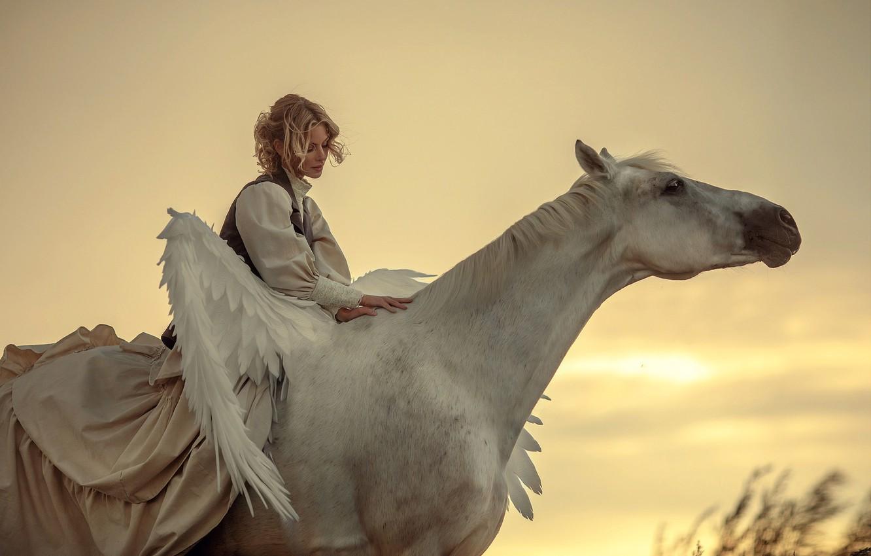 Photo wallpaper girl, animal, horse, wings, blonde, Pegasus, Annie Of Antikov
