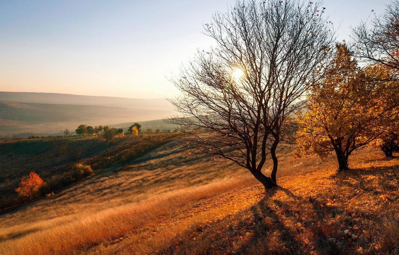 Photo wallpaper sunset, Autumn, Moldova