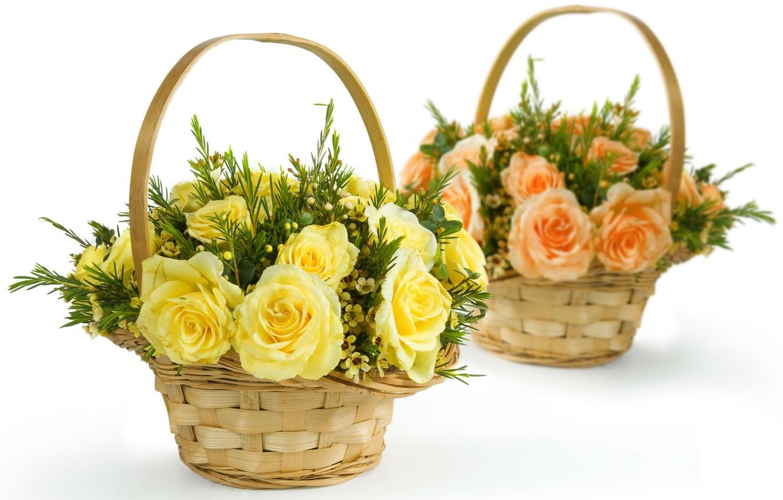 Photo wallpaper flowers, roses, krinke