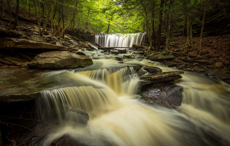 Photo wallpaper forest, river, waterfalls, PA, cascade, Pennsylvania, Ricketts Glen State Park, State Park Ricketts Glen, Oneida …