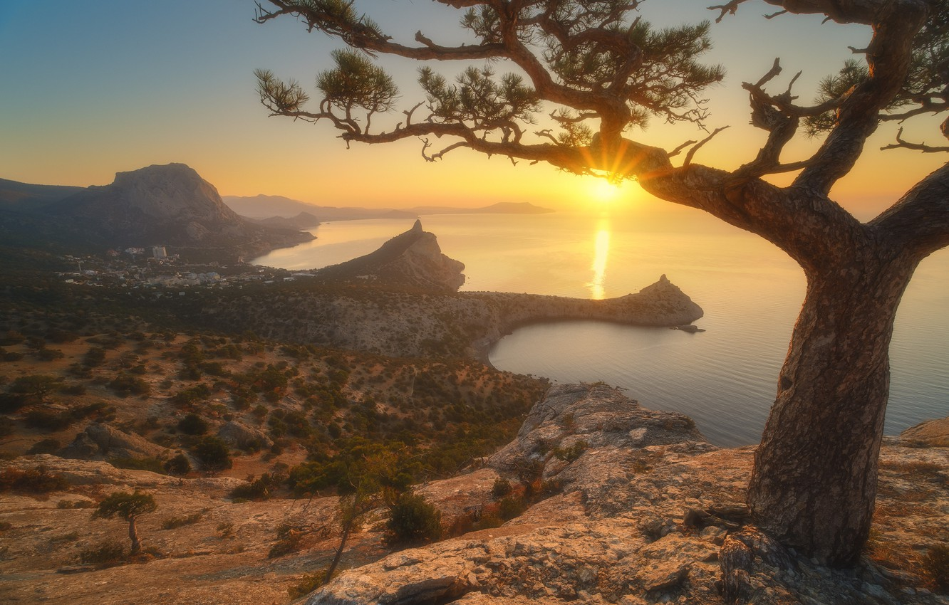 Photo wallpaper sea, the sun, rays, landscape, mountains, nature, stones, tree, rocks, vegetation, Bay, morning, Crimea, pine, …