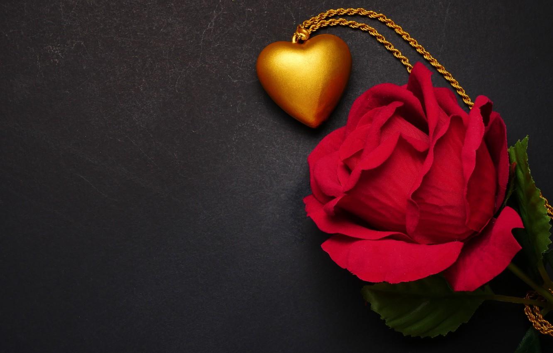 Wallpaper Flowers Heart Rose Pendant Red Love Black