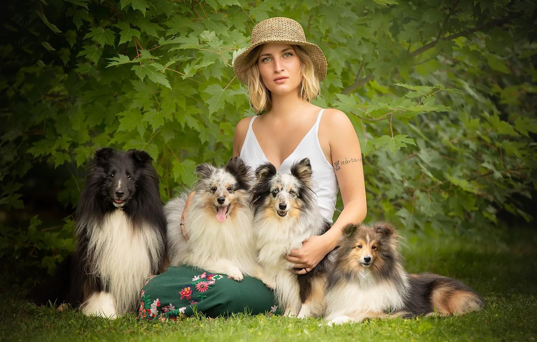 Photo wallpaper dogs, summer, girl