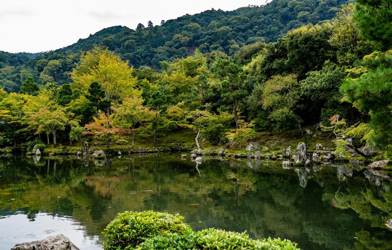 Photo wallpaper pond, Park, photo, Japan, Kyoto